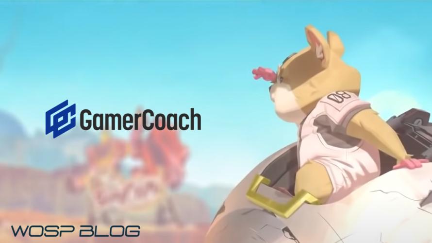 【GamerCoach】OWを根っこから深堀り!授業式コーチング!