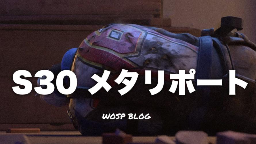 【OW】S30 メタリポート